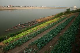 agriculture - aquaculture 2
